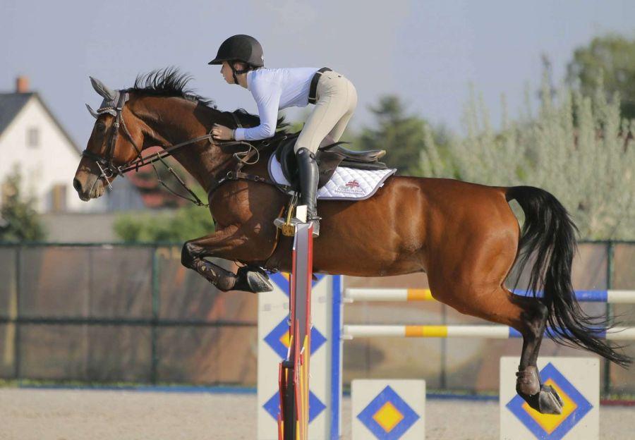 Szponzorált lovasaink remekül szerepeltek a hétvégén!