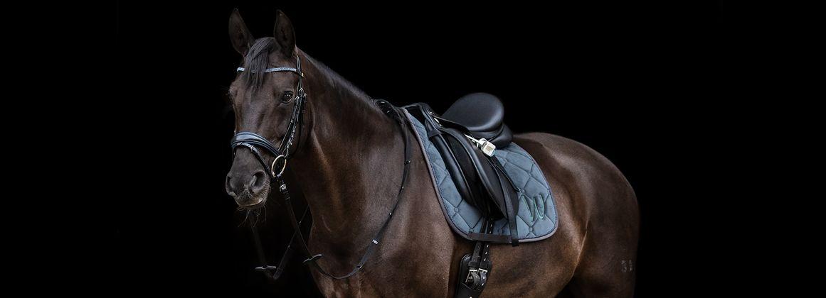 Sabo Equestrian Services